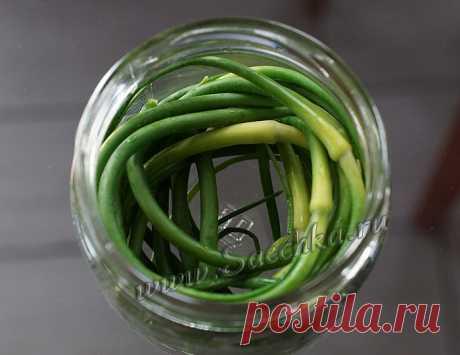 Маринованные стрелки чеснока - рецепт с фото пошагово