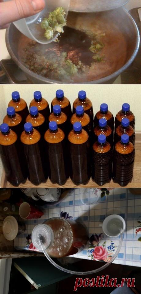 Как сделать домашнее пиво из солода, хмеля, воды и дрожжей