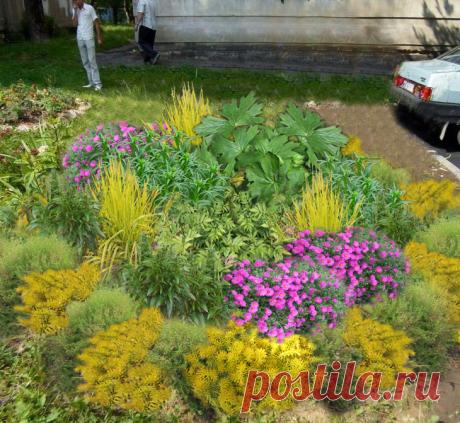 Как реально исправить страшненький цветник | Сад под Петербургом | Яндекс Дзен