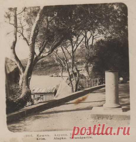 foto_do_1917_goda_stereopara_krym_alupka_ugolok_naberezhnoj.jpg (736×768)