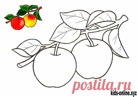Apple coloring pages fruit for toddlers