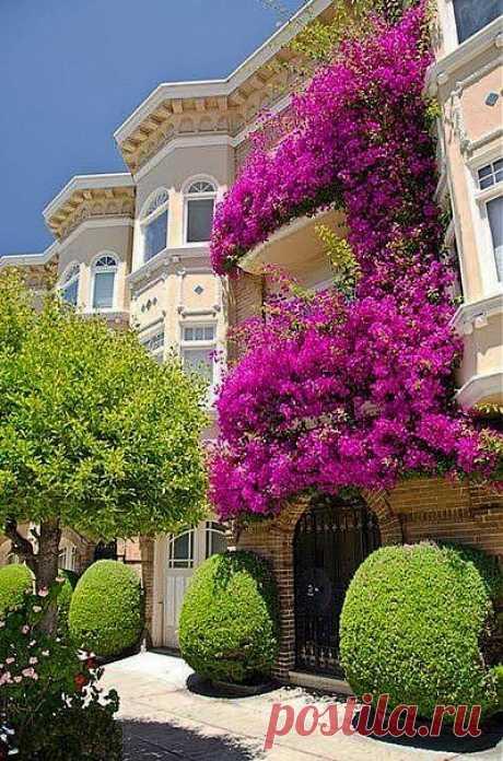 Сан- Франциско.