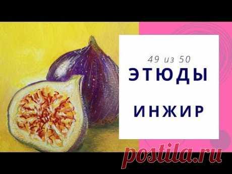 4️⃣9️⃣ ИНЖИР (гуашь). Серия «50 этюдов»