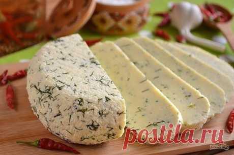 """Домашний сыр из молока и сметаны  Ингредиенты: Молоко — 1 Литр Сметана 20% — 200 Грамм Яйцо — 3 Штуки Соль — 1 Чайная ложка (без горки) Укроп — 1 Ст. ложка (мелко порезанного)  Количество порций: 5-6  Как приготовить """"Домашний сыр из молока и сметаны"""" 1. Подготовьте продукты. Укроп тщательно вымойте, отделите от веточек крупных и мелко порежьте. Приступим. 2. Возьмите удобную для смешивания тару и венчик или миксер. Разбейте яйца, влейте сметану. 3. Венчиком или миксером с..."""