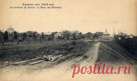Воробьёвы горы, 1904 год.