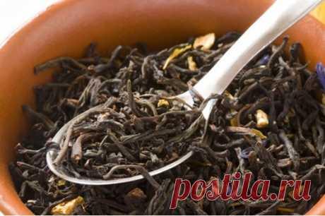 Безумно дорогие сорта чая — Наука и жизнь