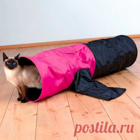 Как отучить кота портить обои и мебель? — Полезные советы