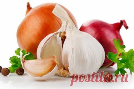 Como emplear correctamente el ajo y la cebolla durante la gripe:: la Salud y la medicina:: Otro:: KakProsto.ru: como hacer simplemente todo
