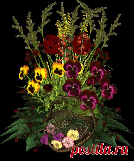 Клипарт 3D-Цветы ч.2