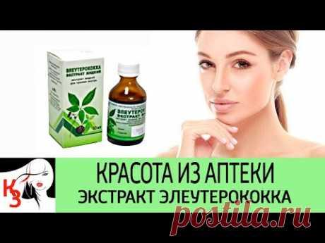 Экстракт элеутерококка. Одно дешевое лекарство заменит 10 других