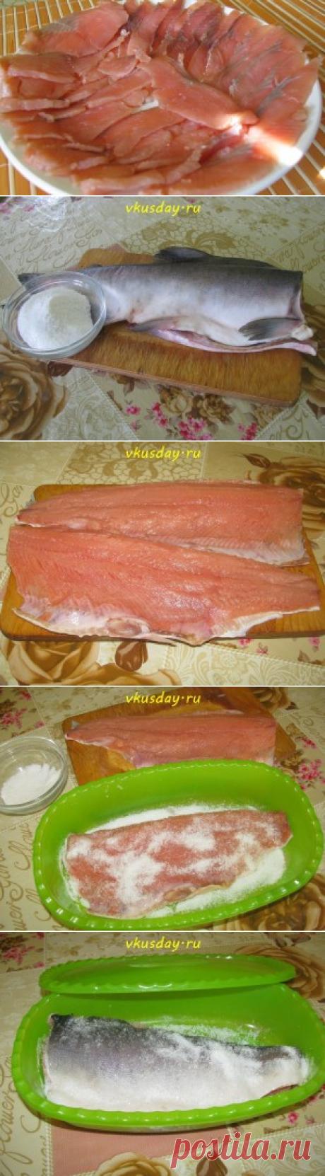 Los peces cartilaginosos salados | el día Sabroso