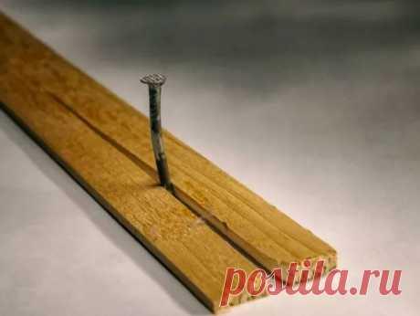 Как забить гвозди так, чтобы не оставалось трещин в древесине — Лайфхаки