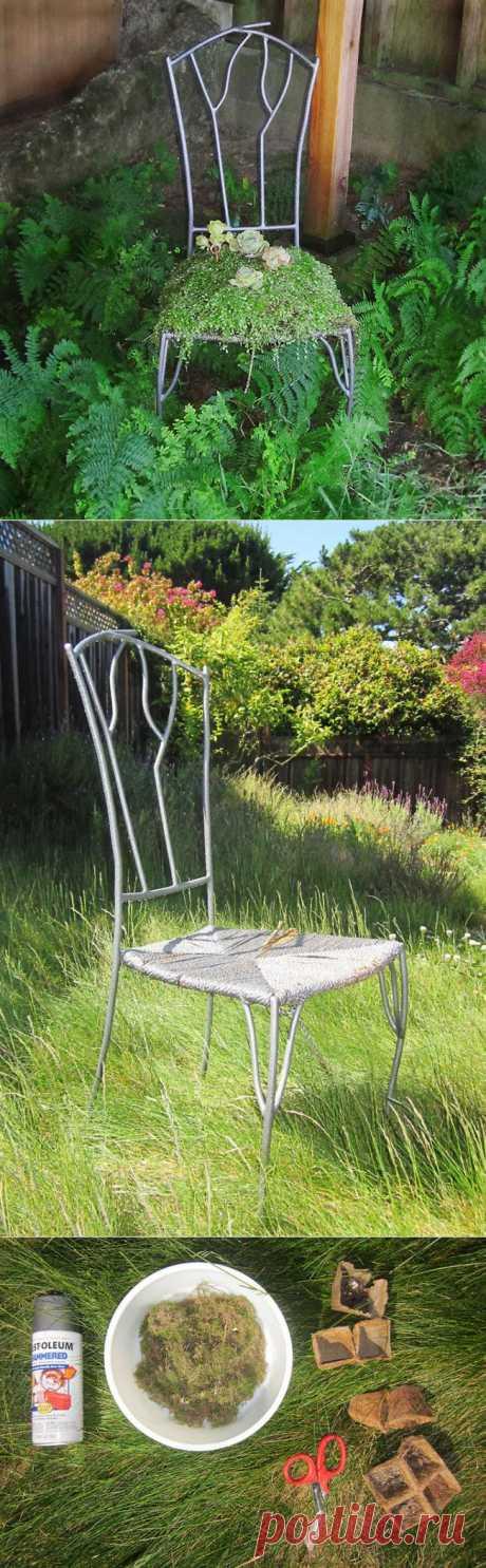 Ландшафтный дизайн. Есть ли у вас старый-при-старый стул, который уже совсем-совсем ник чему не годен? Из него можно сделать прекрасный газон: смесь для цветов, растения со слабой корневой системой и мох сверху для декора. Описание на английском, но всё предельно понятно.