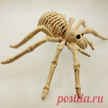 Spider skeleton model horrified lifelike skeleton model diy for decoration halloween party decoration holiday Sale - Banggood.com