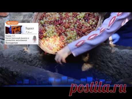 Подкаст «Жизнь и свобода» | Качественный рывок в развитии экономики. виноделие и Эдуардо Эрнекян - YouTube