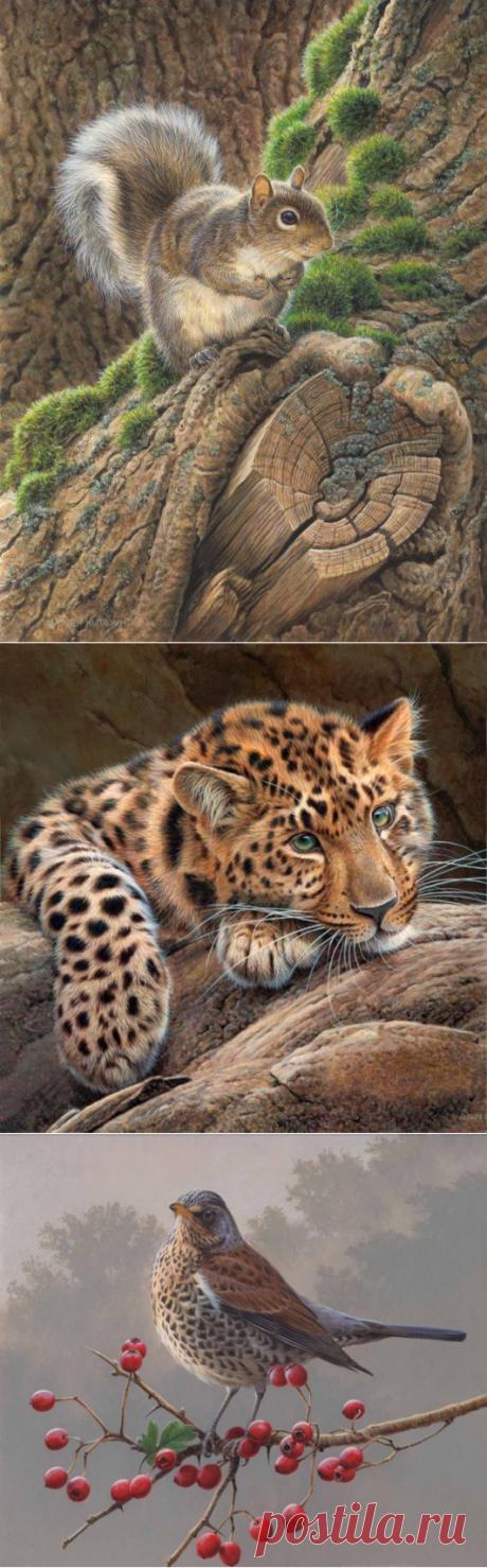 27 cuadros realistas de los animales del pintor-ilustrador inglés Andrew Hatchinsona