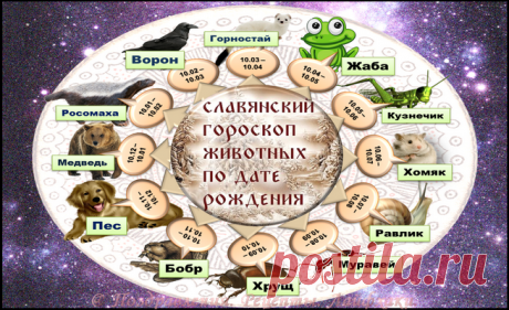 Самый древний славянский гороскоп по дате рождения – так кто же мы такие?   Поздравления. Рецепты. Лайфхаки.   Яндекс Дзен