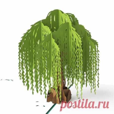 3D Willow Tree Pop Up Card – Lovepop