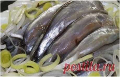 Лучшие закуски из мойвы и салаки  Эта рыбка многими незаслуженно игнорируется, а ведь она очень вкусная. Пальчики оближешь!