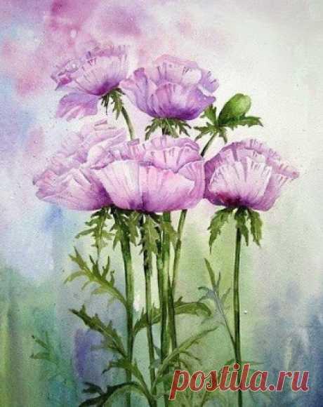 Красивые цветы акварелью
