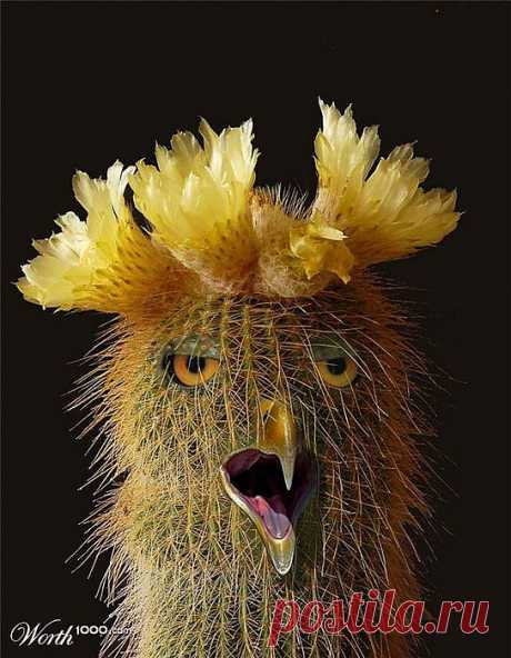 Животное из цветов