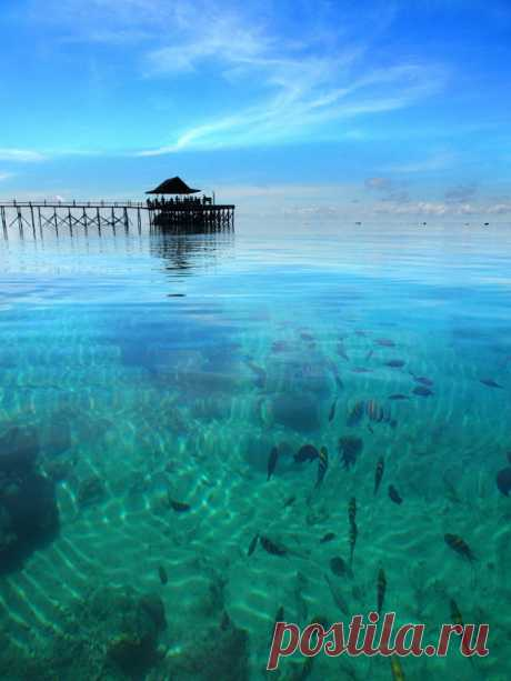 Derawan Island by muhammad muttaqin • 1x Photo Gallery