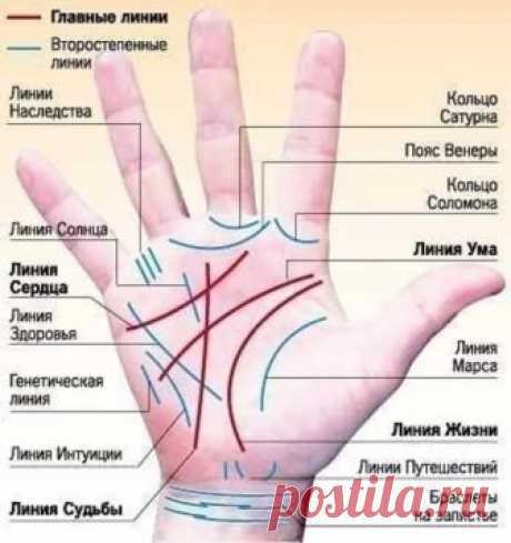 Guessing on a hand. Chiromancy. Palmistry on lines