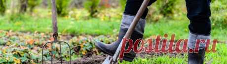 Лучше отдохните! 5 дел в саду и огороде, которые вы делаете зря