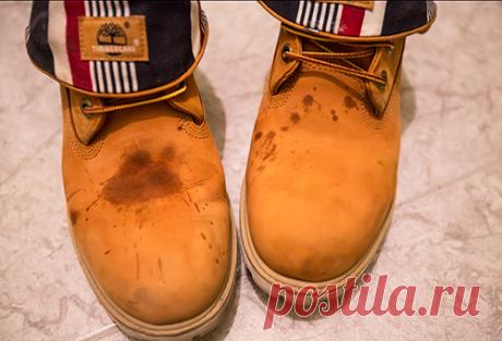 Как домашними и специальными средствами восстановить замшевую обувь?