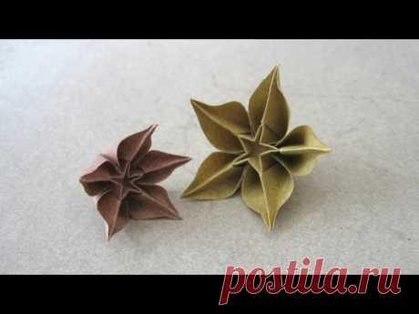 Carambola Flowers by Carmen Sprung | Go Origami!