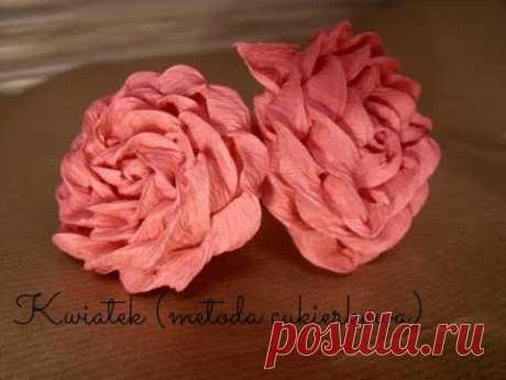 Krok po Kroku #1: Róża (metoda cukierkowa) DIY