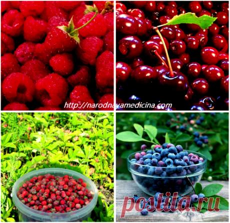 Que productos suben la hemoglobina en la sangre.   el blog de Alena Kravchenko