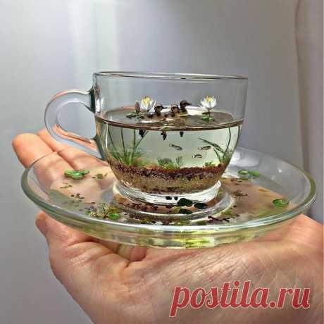 Невесомая красота природы в чашке  #чудисам #творчeство #рукоделие #handmade #хобби #творим_вместе #интересно_знать #beautiful #art #вдохновение