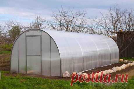"Processing of the greenhouse from polycarbonate in the spring and in the fall Disinfection of the greenhouse from polycarbonate – business responsible, directly depends on it your harvest. Various diseases which hid in the soil and on walls, it is successful ""играют for the time being in prit..."