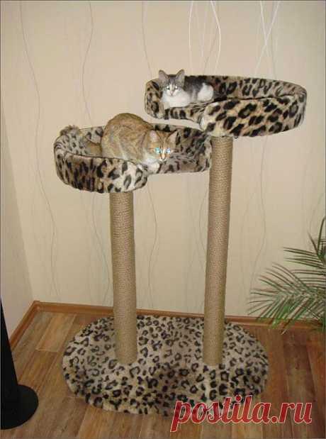 Когтеточка для кошек своими руками | My Milady