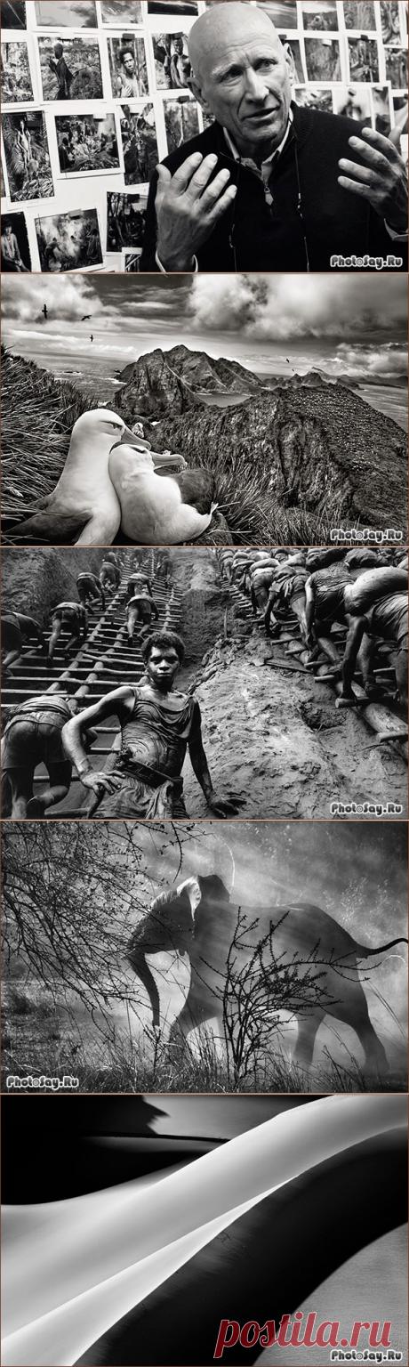Фотограф Себастьян Сальгадо - необычайно талантливый человек, известный в своих кругах не только за потрясающие снимки, но и за помощь нуждающимся людям.