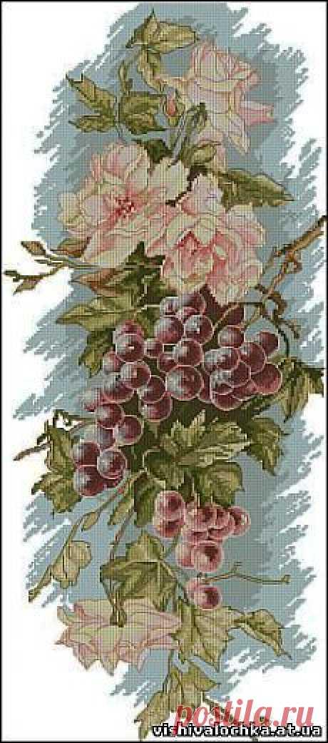 Панелька с виноградом - Фрукты, Овощи, Натюрморт - Флора - СХЕМЫ - ВЫШИВКА КРЕСТОМ