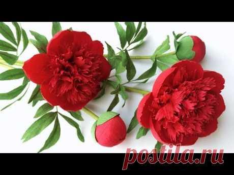 ABC TV | Как сделать красный цветок шарм пион бумаги из Креп бумаги Craft учебник