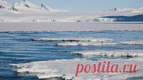 В ООН назвали причину распространения пожаров в Арктике - Газета.Ru | Новости