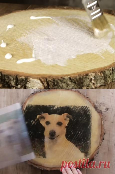 Он вылил крем для загара на кусок дерева и уже через 10 минут замер от восторга!