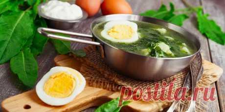 Что приготовить из щавеля: 11 вкусных блюд с пикантной кислинкой.