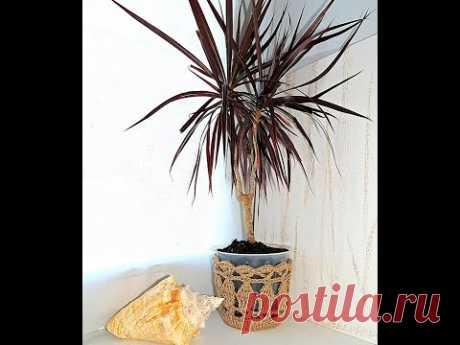 Кашпо для растений. МК. Вязание крючком. Узор в копилку для юбок или летних панамок.