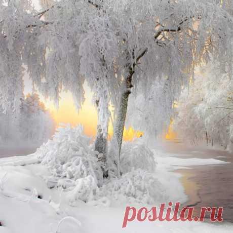 Господи, сделай снег ...       Сделай, чтоб всё – красиво.  Чтобы немножко всех       где-нибудь отпустило ...
