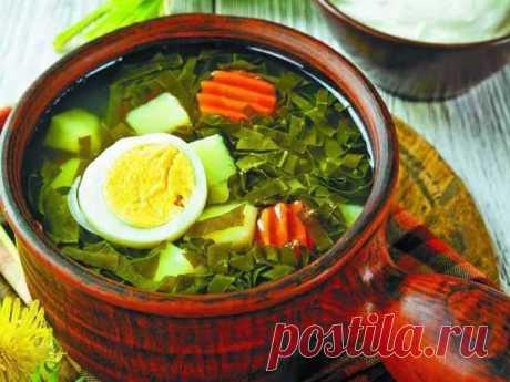Щавелевый суп — 13 рецептов из свежего и замороженного щавеля