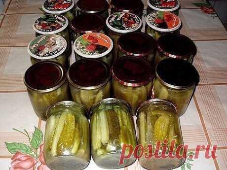 Как приготовить рецепт приготовления огурцов на зиму в горчичной заливке - рецепт, ингредиенты и фотографии