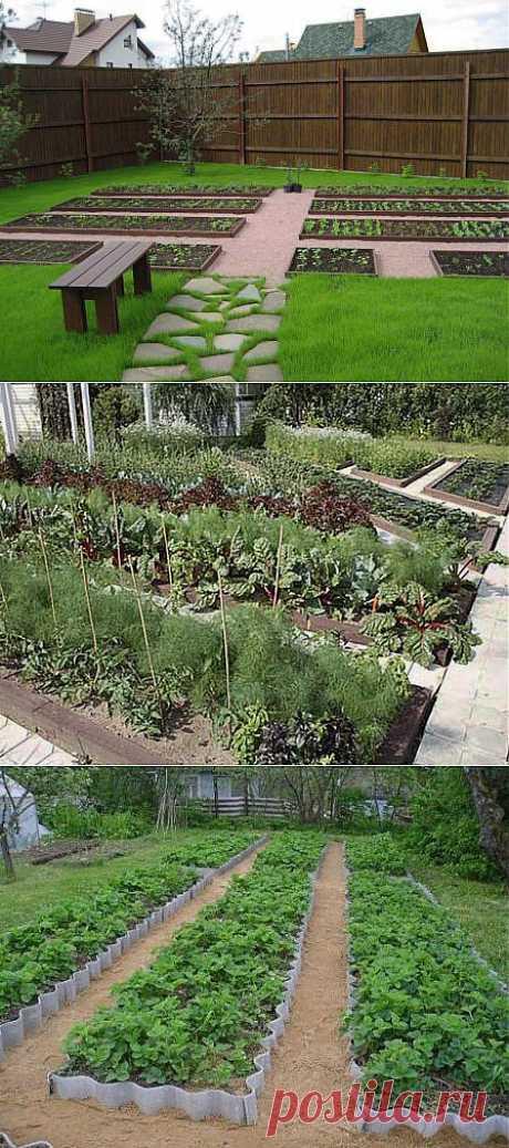 Высокие огороды и грядки: основные преимущества и удобства