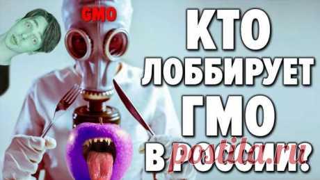 ГМО = Генетически Модифицированное Оружие. Как противостоять ГМО Вырождению   Офигенная