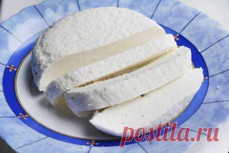 Адыгейский сыр домашний рецепт с фото пошагово - 1000.menu