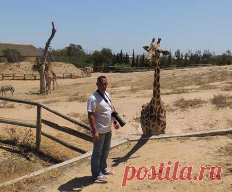 Тунис. Зоопарк Фригия.