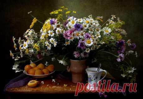 «Фото натюрморта и абрикосы» — карточка пользователя Стелла М. в Яндекс.Коллекциях